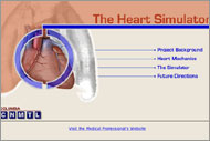 Heart Simulator