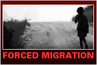 Forced Migration Case Studies