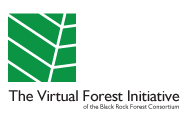 Virtual Forest Initiative